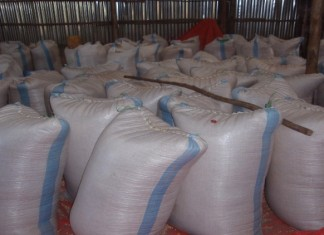 maize in sacks