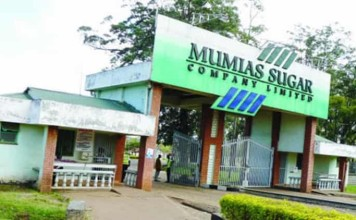 Mumias Sugar Company senior manager Joseph Lubya has been shot dead