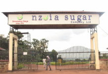 The struggles of Nzoia Sugar Company and Mumias Sugar Company should act as an eye opener