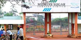 The lack of ethnic balance in Mumias Sugar Company has been highlighted by an NCIC Report