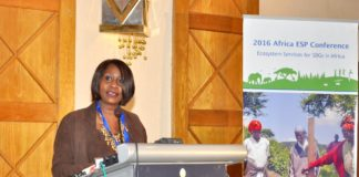 Cabinet Secretary for Environment, Water and Natural Resources Judy Wakhungu