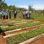 Mr. Otanga with farmers at one of the passion fruits seedbed at Sango