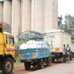 NCPB will only purchase maize from registered farmers