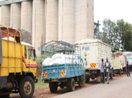 Farmers in West Pokot and Trans Nzoia have urged the government to open NCPB buying centres