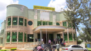 The Kenya Seed headquarters in Kitale