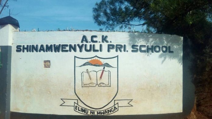 Shinamwenyuli Primary School