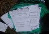 Some of the Ford Kenya ballot papers found dumped in Lugari forest