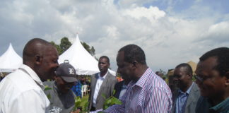 Kakamega Governor Wycliffe Oparanya giving coffee seedlings to farmers