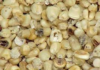 Maize that has been affected by Aflatoxin