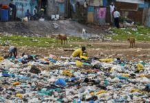 NEMA has seized more than 500 Kg of plastic carrier bags in West Pokot County