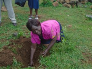 The Lugari Sub County Foresters Association treasurer Mrs. Alice Ingutya when she led the tree planting exercise at Sipande secondary school