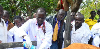 West Pokot Governor John Lonyangapuo during the vaccination exercise