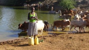 Residents in Kacheliba, West Pokot have urged the national government to help them mitigate the drought crisis