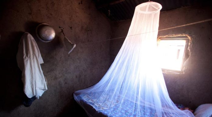 Mosquito nets are vital when it comes to tackling malaria infections