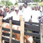 Nandi Governor Stephen Sang at Chepturer cattle dip