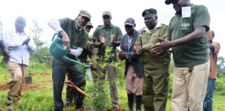 Vihiga County Environment CEC Prof. Inonda Mwanje lead Vihiga residents in a tree planting exercise