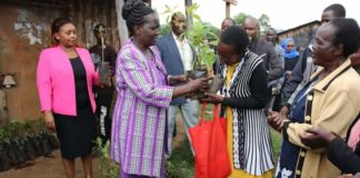 Nandi woman representative Tecla Tum has urged Nandi residents to focus on avocado farming