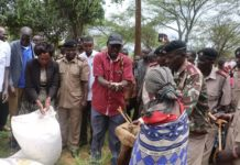 West Pokot Governor John Lonyangapuo launches the food disbursement program