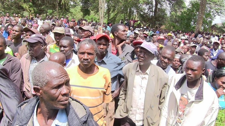 A section of farmers who turned up for the elections/Photo/Leonard Wamalwa /West Fm