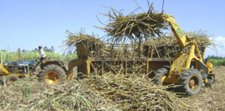 Navakholo MP Wangwe has said the sugar task force will deliver its mandate and cane farmers will be helped