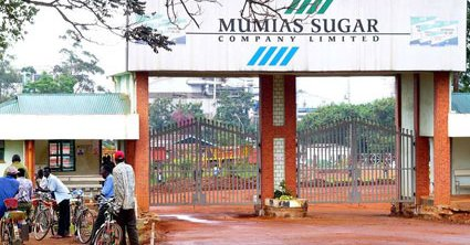 Mumias Sugar Company's losses had risen up to Kshs 15.1 billion in the year ending June 2018