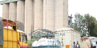 NCPB is set to buy only 400 bags of maize per farmer