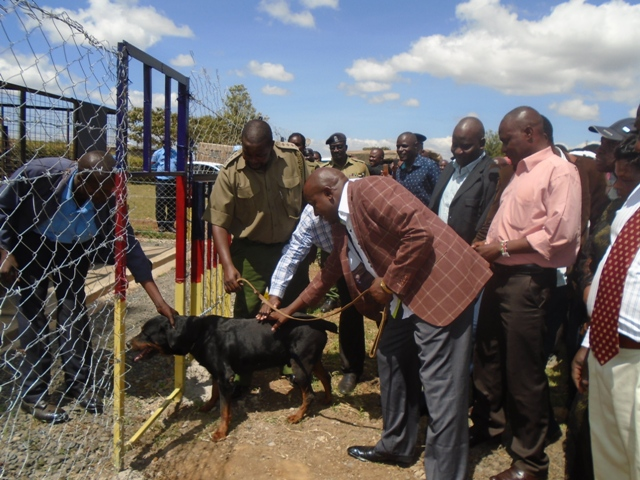 Lugari MP Ayub Savula patting one of the sniffer dogs
