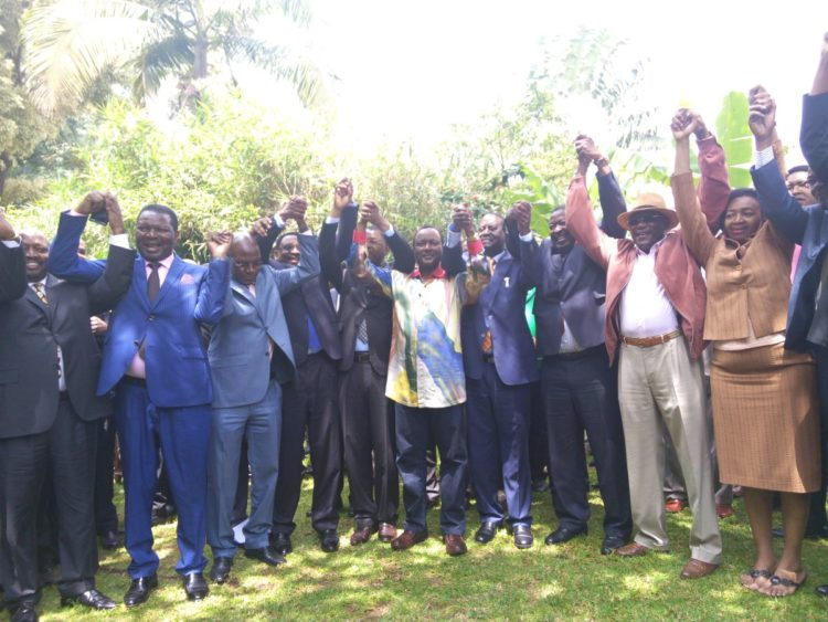 NASA have unveiled a special taskforce team which will among other things pick the opposition flagbearer