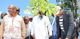 President Uhuru Kenyatta (right) and Environment CS Keriako Tobiko (left) during the National Tree Planting Day