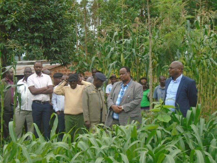 Livestock PS Harry Kimutai (right) on one of the dairy farmer's yard in Lugari in a past visit