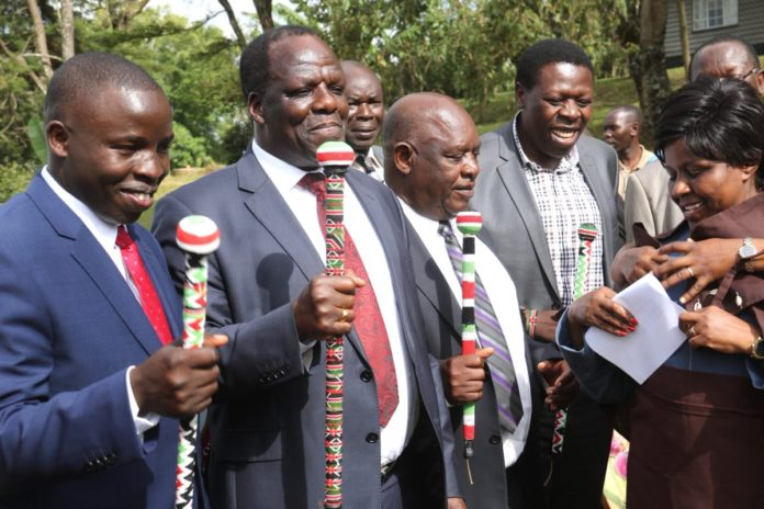 Governors from the Lake Region Economic Bloc (LREB)