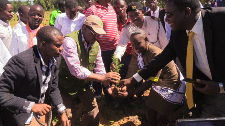 Environment CS Keriako Tobiko planting a tree at Sangalo Institute