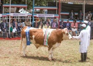 President Kenyatta has called for concerted efforts from the private sector to develop innovations to benefit farmers. (PHOTO/PSCU)