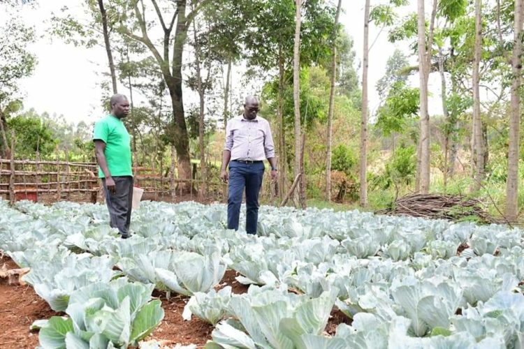 Robert Choge's farming venture has boosted his financial earning
