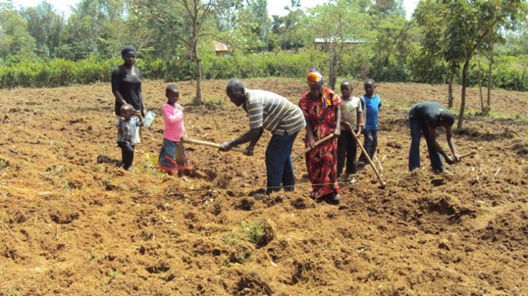 Farmers in Western region have been urged to embrace diversification