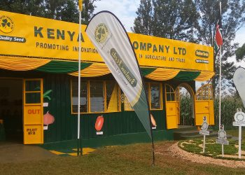 The Kenya Seed stand at the show