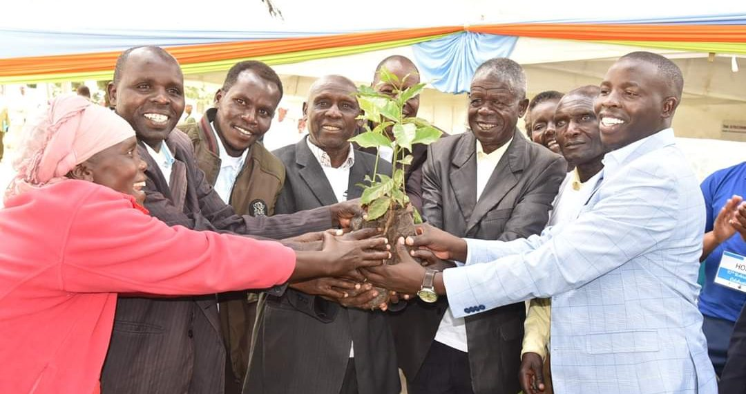 Nandi Governor Stephen Sang(right) with farmers when he flagged off the distribution of the coffee seedlings. Photo/Courtesy