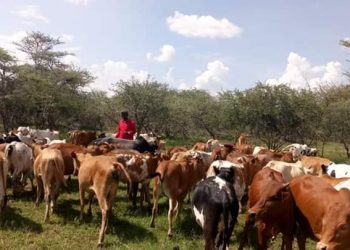 West Pokot Governor John Lonyangapuo led the Kenyan delegation in the vaccination exercise