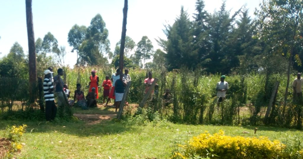 Shocked Maji Mazuri residents watching from a distance