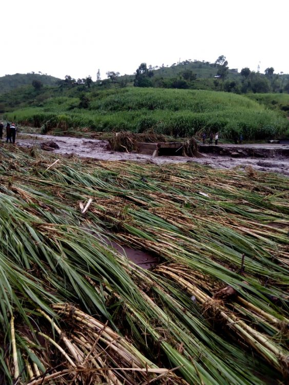 Heavy rainfall destroyed Kipsakiat bridge