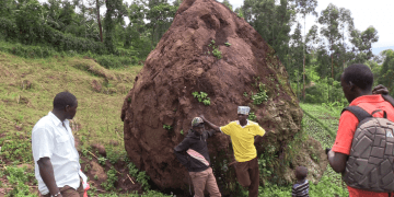Residents standing next to the rock