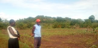Mr. Anthony Panyako with his wife Sarah Nekesa on their farm