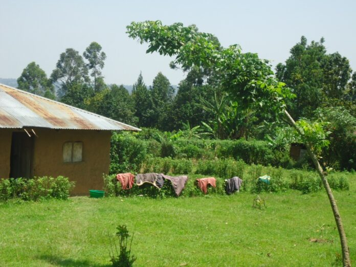 Kabaka's son only house